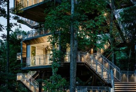 La maison dans les arbres, repaire des scouts américains