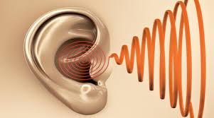 pollution sonore